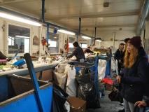 Waste-disposal-centre-4