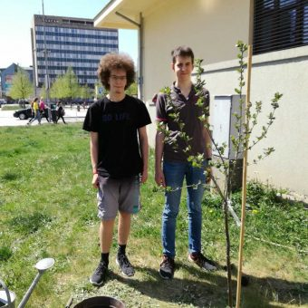 PLANTING A PROJECT TREE NEXT TO OUR SCHOOL